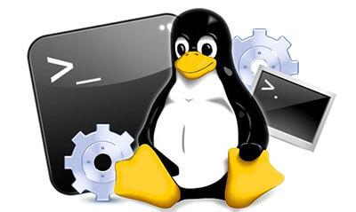 دستور grep در لینوکس و نحوه جستجو در متون