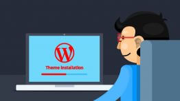 find wordpress theme name